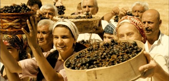 raisins-espoir