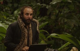 loi-jungle